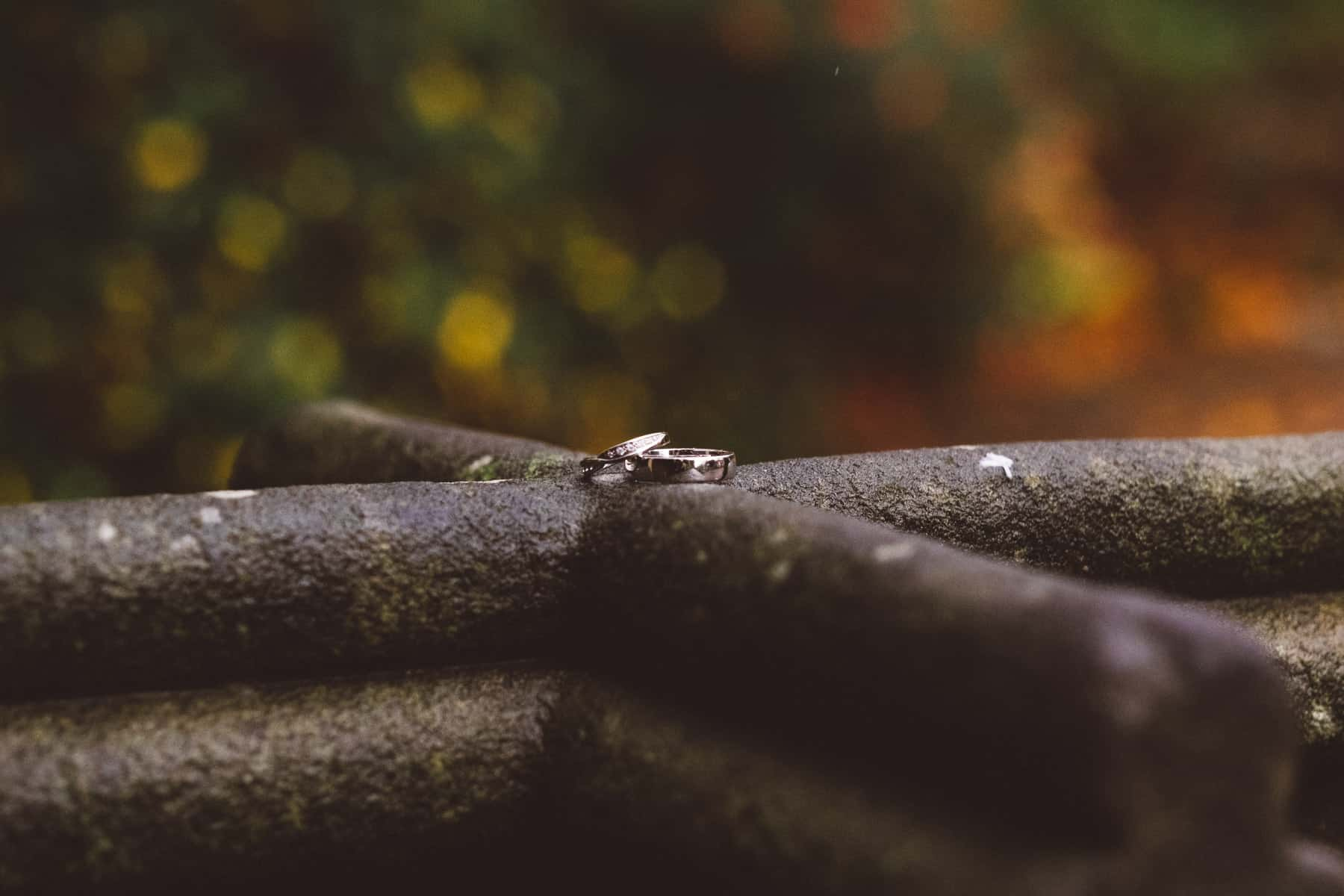 wedding photography rings (1 of 1)